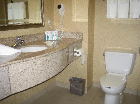 Hampton Inn & Suites Albany Airport: Bathroom
