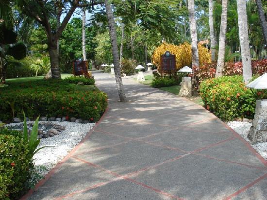 Natura Park Beach Eco Resort & Spa: walk way