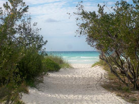 Sol Cayo Coco: La Playa