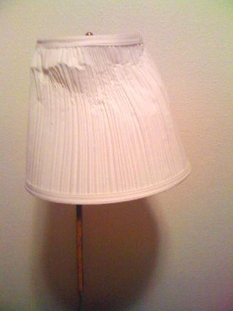 Skyway Inn Hotel: And yet another fabulous lampshade on the other side of the bed