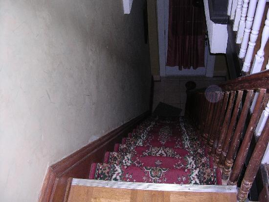 New York Homestay: Steps from the top - you can see they are a little steep.