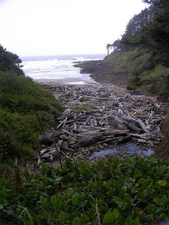 Yachats, Орегон: Driftwood & beach near the Devil's Churn