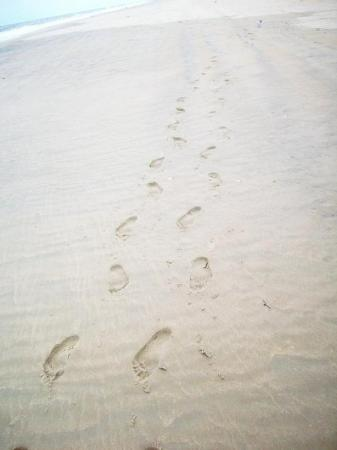 Ocean City, MD: Our Foot prints