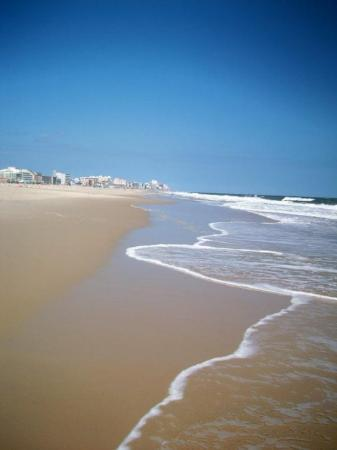 Ocean City, MD: Oh yea i took this pic!
