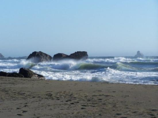 Brookings, OR: Whaleshead beach - the winds were high, the temp cool and the waves sprayed up high