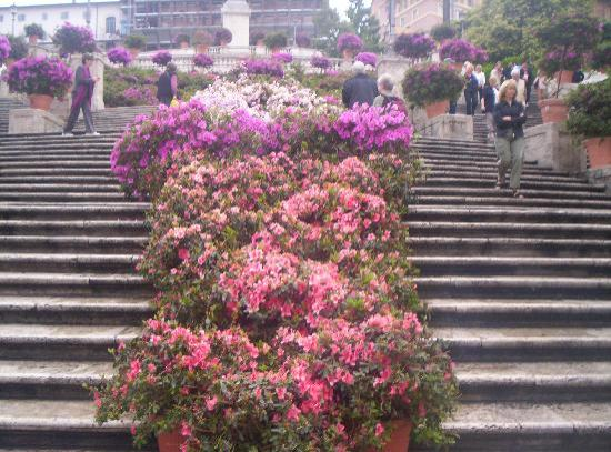 Roma, Italia: The steps, with flowers down the center