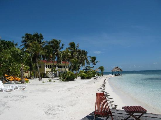 Turneffe Island Resort: The beach - a bit hard but pefect water