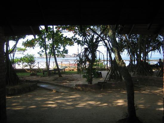 Barberyn Reef Ayurveda Resort: Aussicht Terrasse