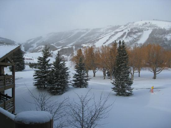 All Seasons Condominiums : Great View