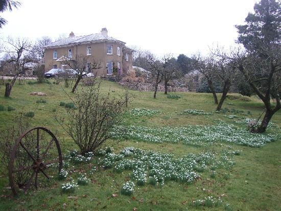 Beachborough Country House: Garden view