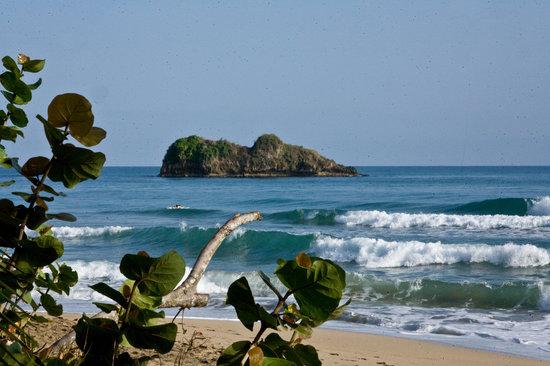 Cariblue Beach & Jungle Resort: dall'altra parte della strada....