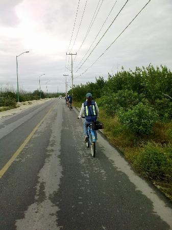 Hotel Marina El Cid Spa & Beach Resort: visita a puerto morelos en bicicletas