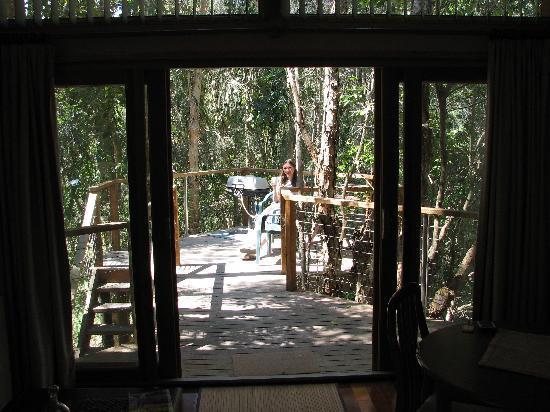 Wanderers Retreat: coffee on the terrace in the treetops