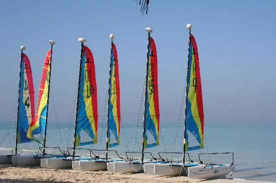 Couples Swept Away: Hobies on the beach