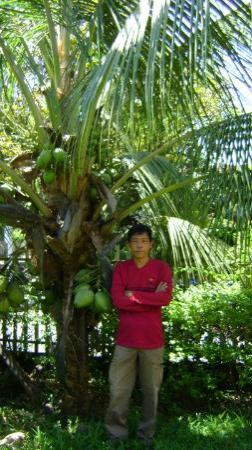 Origin Manado Indonesia