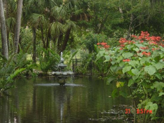 WOGSP Pond w/fountain - Picture of Palm Coast, Florida - TripAdvisor