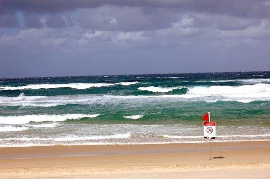 Surfers Paradise Image