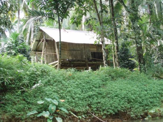 Takua Pa, Thailand: Hütte eines Einheimischen