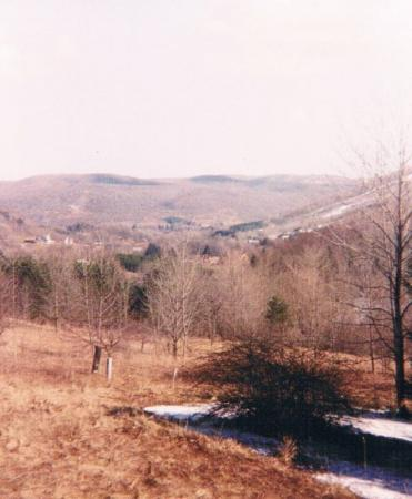 Ellicottville, นิวยอร์ก: spring thaw in the valley~right out back...morning coffee tasted GREAT!!