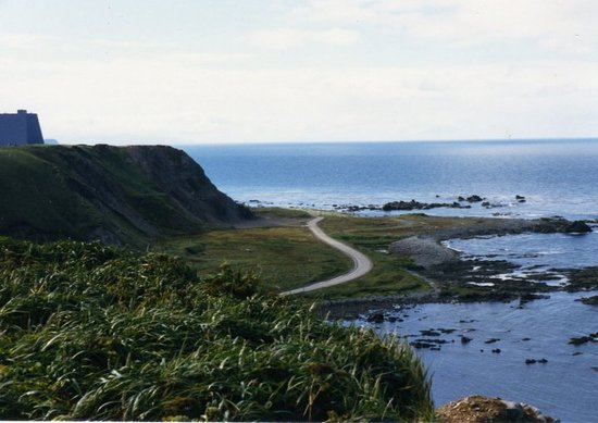 Shemya Island照片