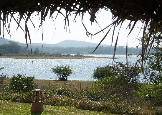 Orange County Resorts Kabini : View from the restaurant