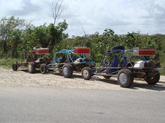 Xtreme-Buggy - Day Tours: Buggys