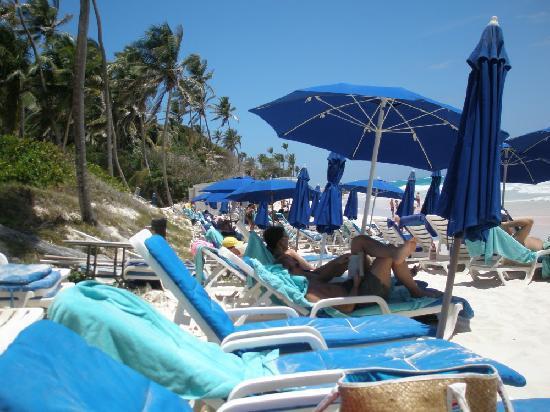 The Crane Resort: the crane beach