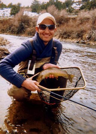 East walker river fly fishing bilde av best western for Walker river fishing
