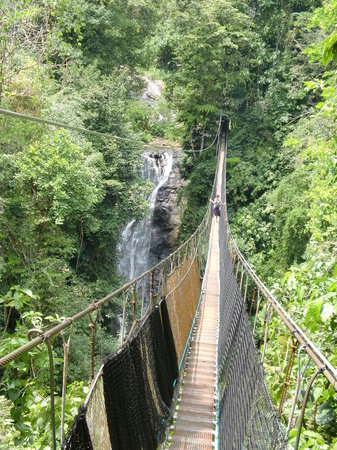 Los Campesinos Ecolodge: a 120m and 40m high hanging bridge