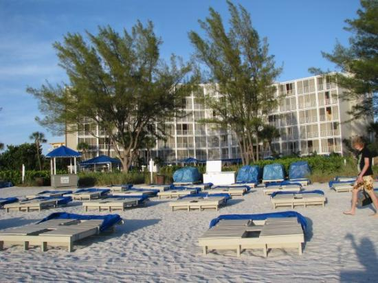 St. Petersburg, FL: Our place....looking up from the beach.
