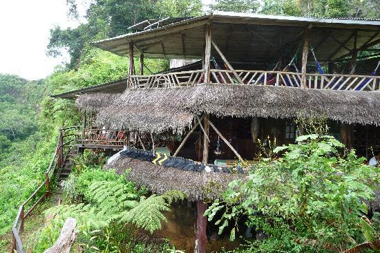 Amarongachi Jungle Eco-Lodge: Hammock central