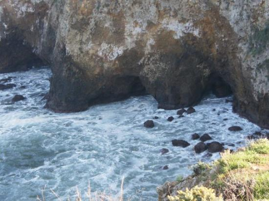 Santa Cruz Island Foto
