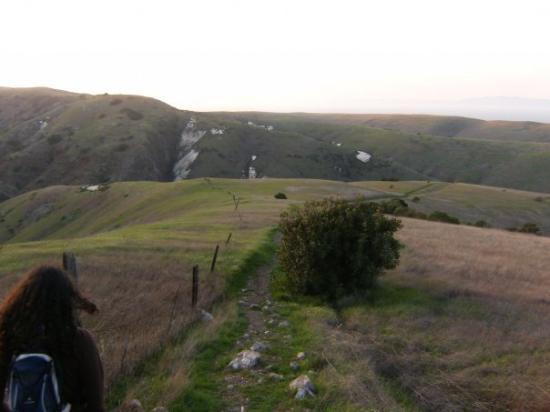 Santa Cruz Island ภาพถ่าย