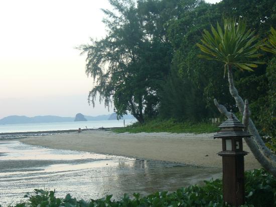 Nakamanda Resort & Spa: spiaggia