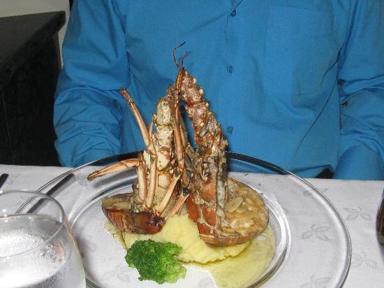 Luxury Bahia Principe Ambar Blue Don Pablo Collection: langouste excellente resto don pablo