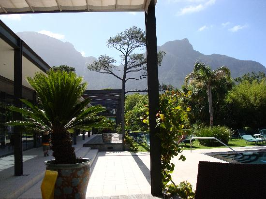 Vineyard Hotel: View from the pool cafe