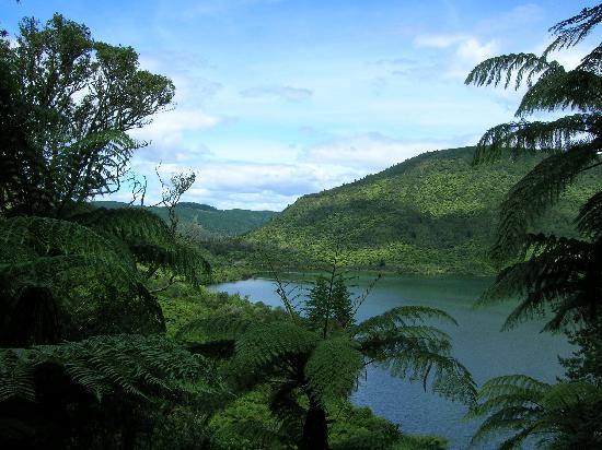 ألبين موتيل آند كونفرنس سينتر: Green Lake