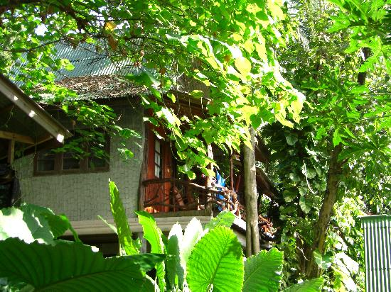 Bill Resort: Bungalow
