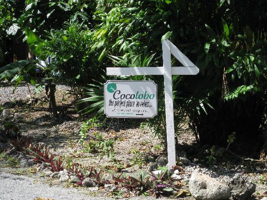 Cocolobo: The sign says it all!