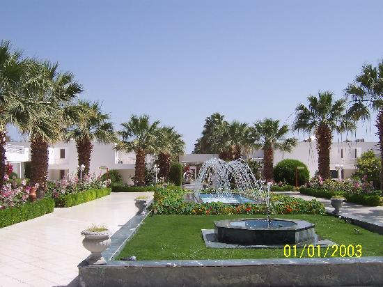 Maritim Jolie Ville Resort & Casino Sharm El-Sheikh: from our door