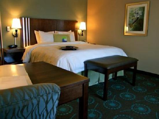 Hampton Inn & Suites Lincoln - Northeast I-80: King Room