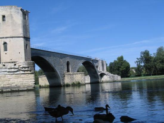 Bilde fra Avignon