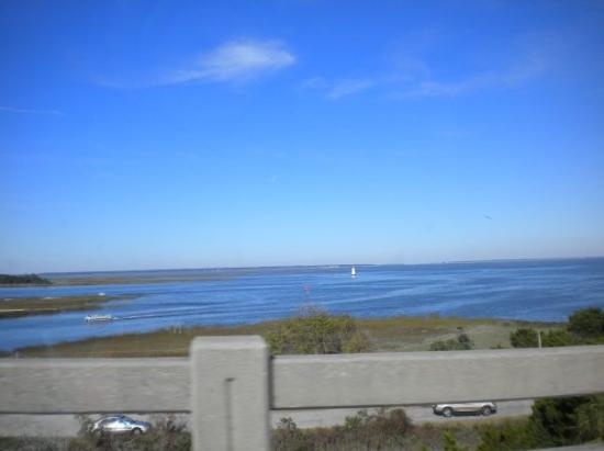 Tybee Island, GA: View from the road