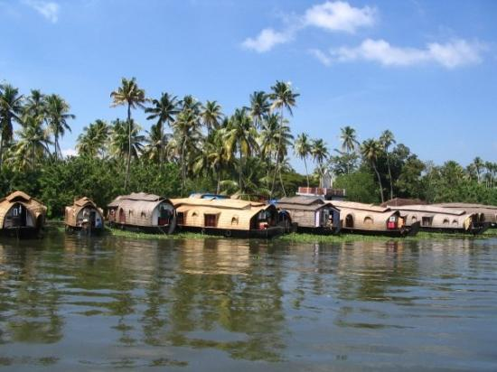 Аллапужа, Индия: Houseboats, Alleppey, Kerala
