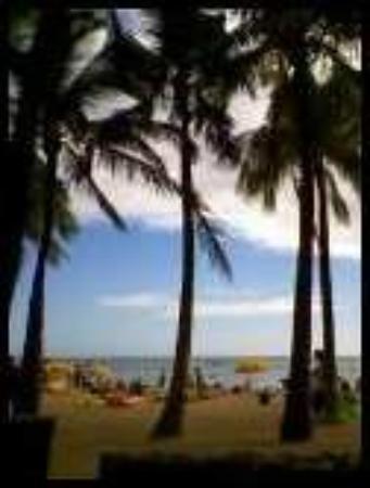Waikiki Beach: the first day in Hawaii 9-27-2009