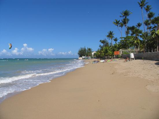 Coqui del Mar Guest House: Beach