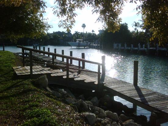Duck Key, FL: Picture from Hawks Cay inner harbor