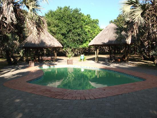 Bonamanzi Game Reserve: The pool