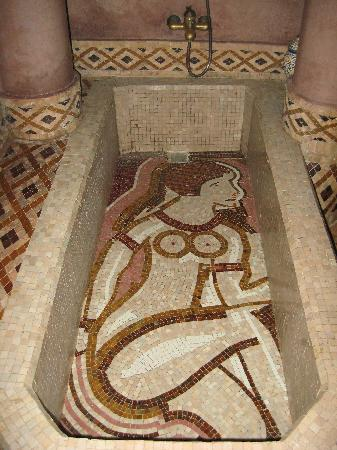Riad Ibn Battouta : Damas Tub...All Mosaic