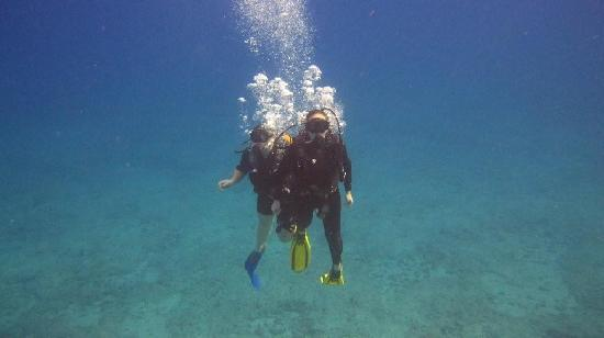 Oahu Diving: Becoming one with the ocean.